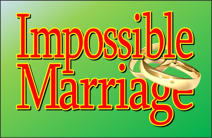 Impossible Marriage by Playhouse 2000