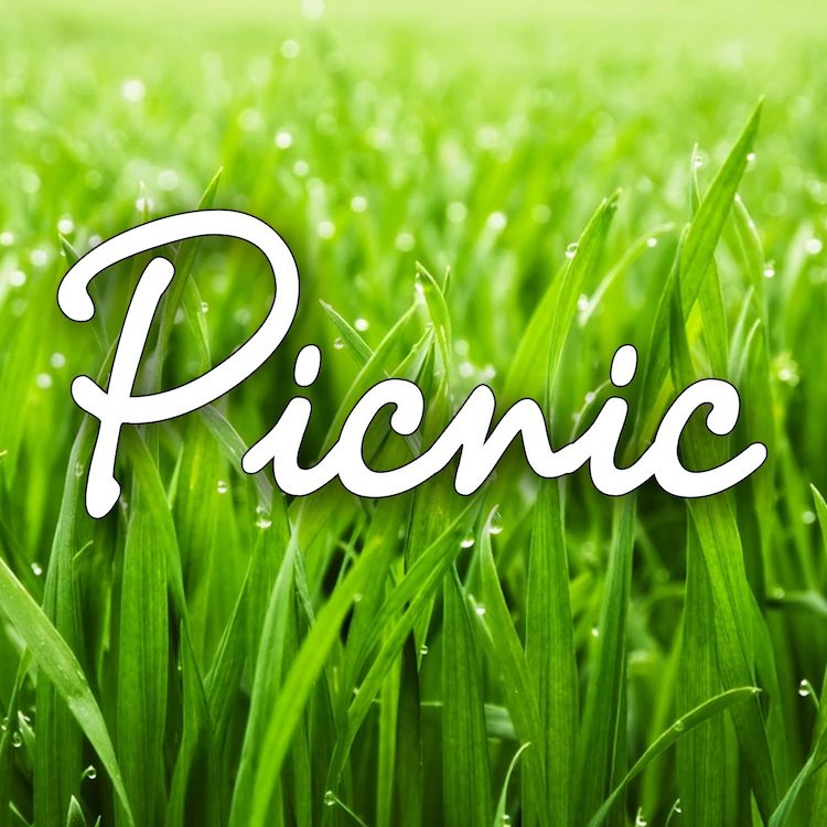 Picnic by Wimberley Players