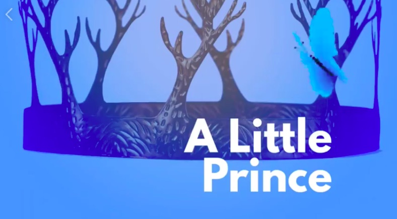 The Little Prince by McCallum Fine Arts Academy
