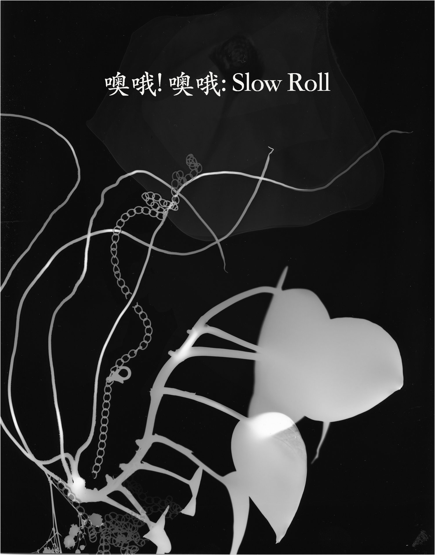 Slow Roll by Salvage Vanguard Theater