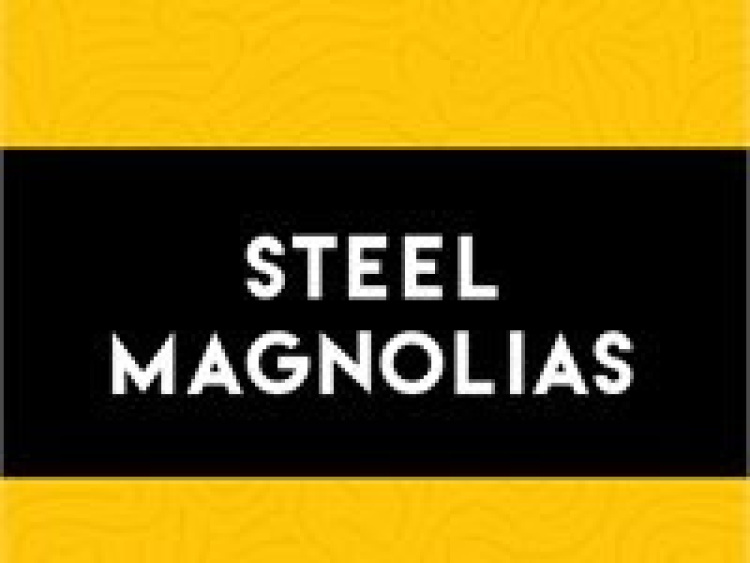 Steel Magnolias by Vive Les Arts (VLA) Theatre