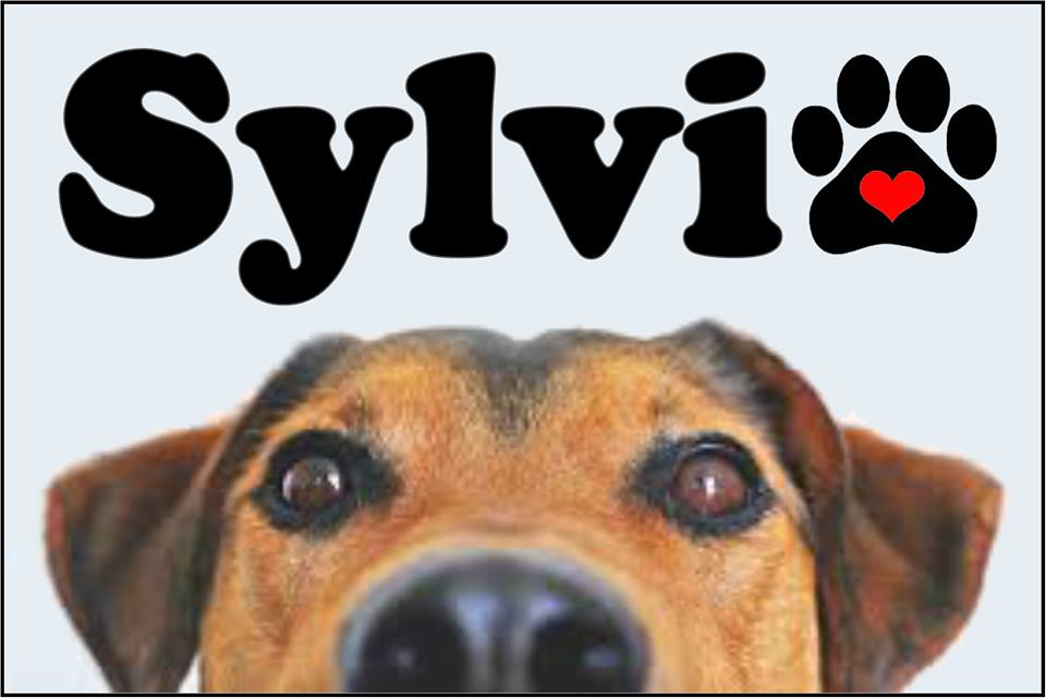 Auditions for Sylvia, by Playhouse 2000, Kerrville