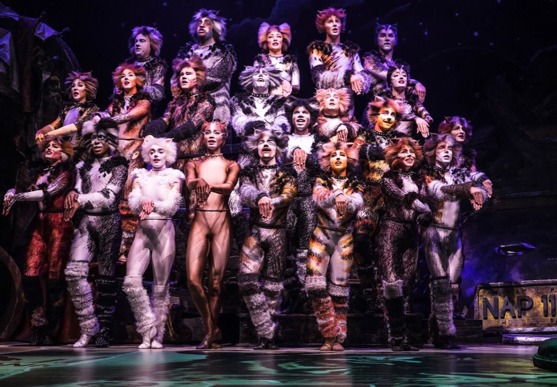 Review: Cats by touring company